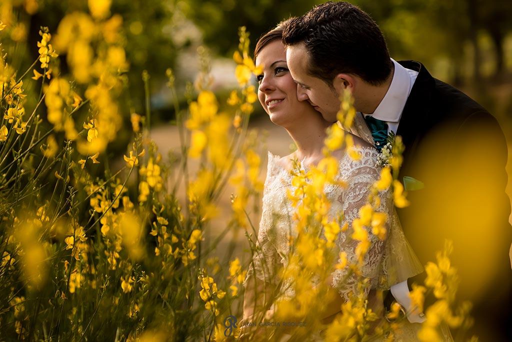 Novio besa a novia en el campo
