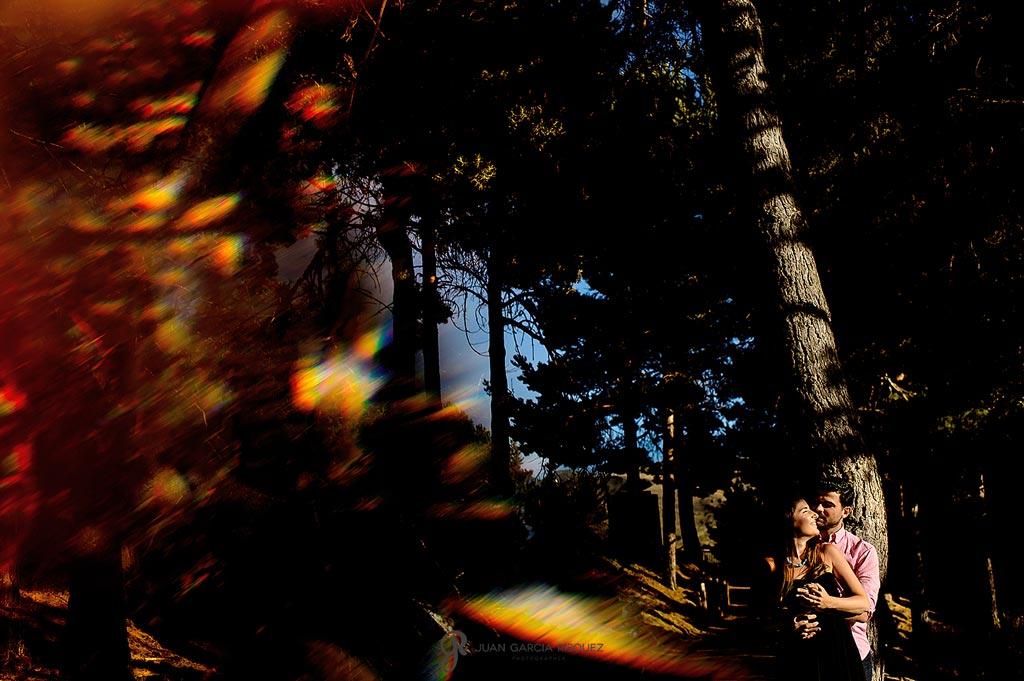 Pareja de novios se abrazan en un bosque